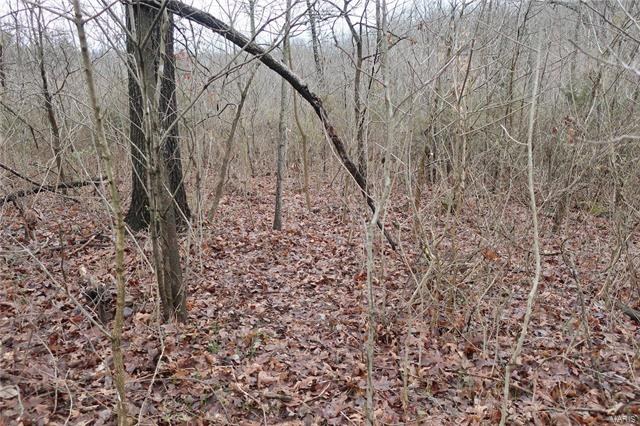 0 9.04 Acres - Dittmer  Road -12