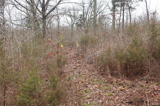 0 9.04 Acres - Dittmer  Road -8