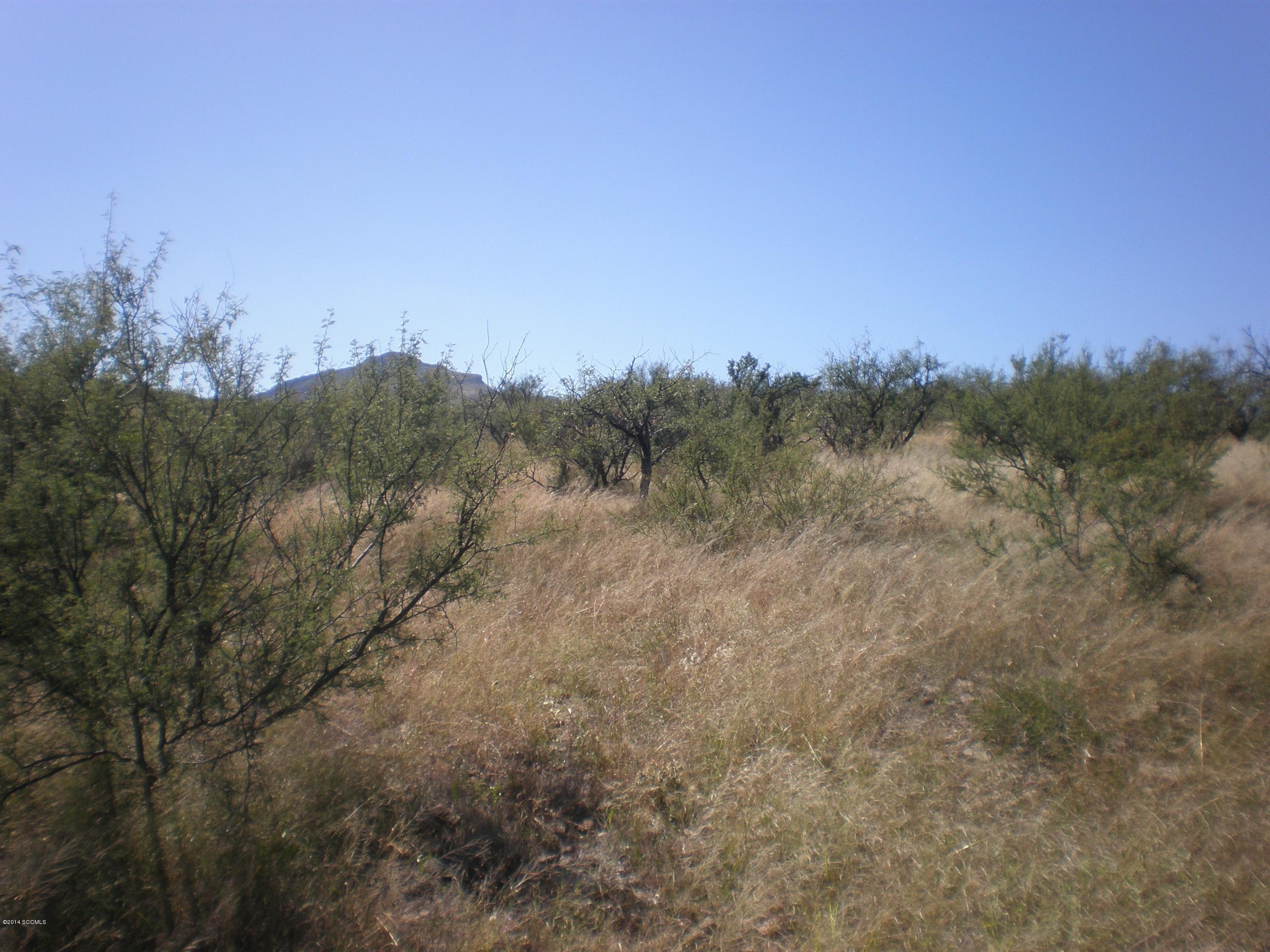 5  Vista De Torres -6